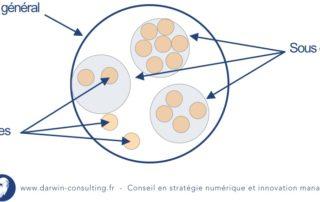 cercles-holacratie