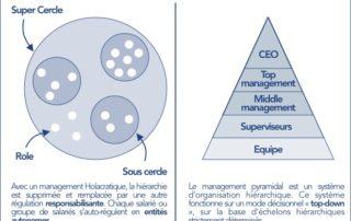 infographie holacratie vs hierarchie
